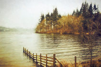 Lakeside Sojourn by Vicki Field