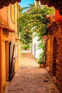 Bormes Les Mimosas, Provence, France by 7horses