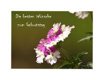 Die besten Wünsche zum Geburtstag... by Gertrud  Aulbach