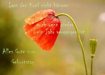 Lass den Kopf nicht hängen... by Gertrud  Aulbach