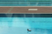 POOL FOR ONE by © Ivonne Wentzler
