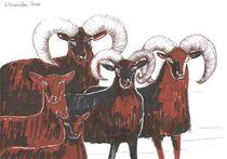 MOUFFLON SHEEP von Elisaveta Sivas