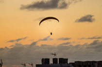 Über den Dächern von Puerto de la Cruz von Wilhelm Menze