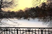 Winterliche Impressionen aus dem Palmengarten 4 von langefoto