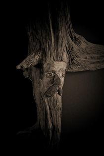 Wald Einwohner in Nacht by Wladimir Zarew
