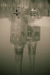 Lübecker Dom Spiegelung von fotowelt-luebeck