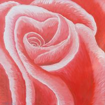 Rote Rose by Barbara Kaiser