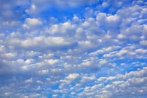 Lots of tiny clouds. by David Hare