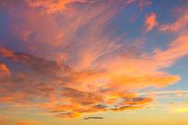 Golden Clouds von David Hare