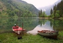 Boote am See by Bruno Schmidiger