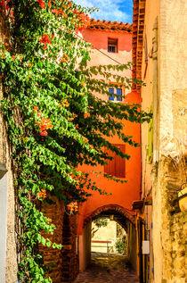 Bormes Les Mimosas, Provence, France von 7horses