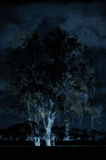 Nachtjäger by Bastian  Kienitz