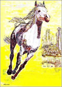 ~ Wild Horse ~ by Sandra  Vollmann