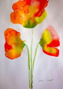 poppies by Maria-Anna  Ziehr