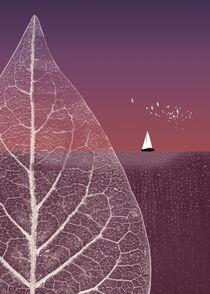 Ocean Wonderland III by Pia Schneider