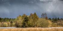 Stormy Light von David Tinsley