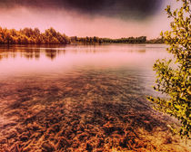 Lake in Laupheim by Michael Naegele