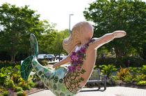 A-mermaid-in-a-norfolk-botanical-gardens