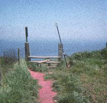To the Sea by Elizabetha Fox