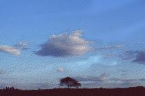 Cloud and Tree  by Elizabetha Fox