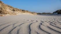 Sandwaves von nordfriesland-und-meer-fotografie