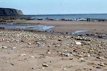 Low Tide East Coast von Elizabetha Fox