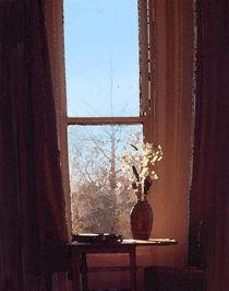 Sunlight in the Window  by Elizabetha Fox