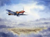 P-40 Warhawk Aircraft von bill holkham