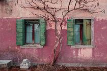 Venice-house
