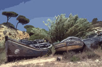 Ancient Boats on the Beach von Elizabetha Fox