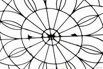 Das Dach der Welt von malin