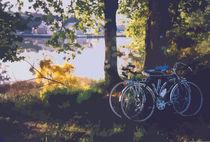 Bicyles by the Lake  von Elizabetha Fox