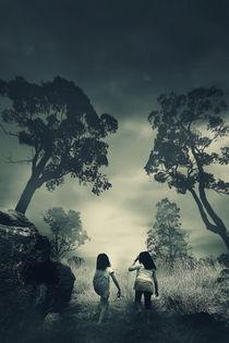 Misty Forrest by irwan setiawan