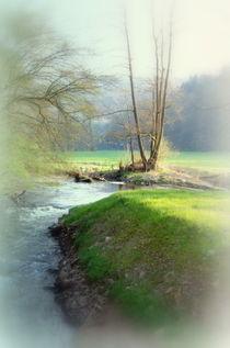 Flusslauf by laakepics