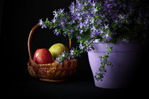 Körbchen mit Fruchten by Wladimir Zarew