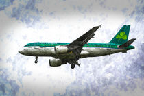 Aer Lingus Airbus A319 Art by David Pyatt
