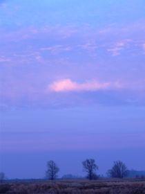 Blaue Stunde 3 von deern-vun-diek