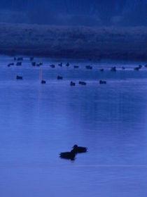 Blaue Stunde 2 von deern-vun-diek
