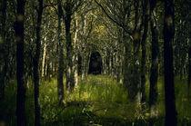 Fairy tale  von lilithdavinci