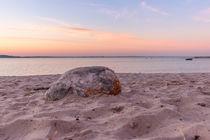 Sonne Strand Stein von Pascal Betke