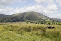 Broadlee Bank Tor by Kevin Round