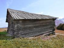 Dolomites Barn  by Elizabetha Fox