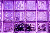 Purple window. von David Hare