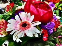 Die schöne Blume von Eva Dust