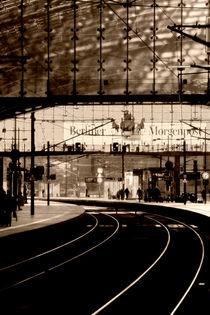 Berliner Morgenpost von Bastian  Kienitz