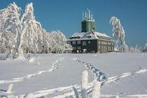 Kahler Asten im Winter von Heidi Bücker