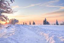 Winterwanderweg  von Heidi Bücker