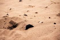 Sand mit Muscheln und Steinen by framboise