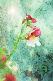 Blume auf Rost von © Ivonne Wentzler