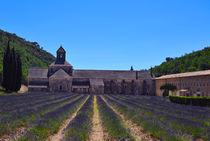 senanque abbey von emanuele molinari